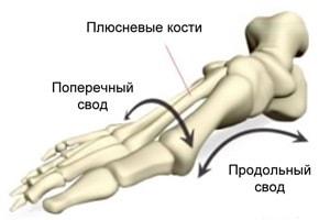 Изображение 2: Плоскостопие - клиника Семейный доктор