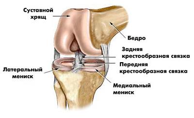 считаю, опухло правое колено и болит этом что-то есть